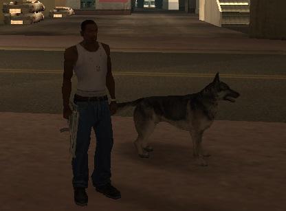 Коды на GTA San Andreas на собаку